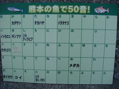 09120809.JPG