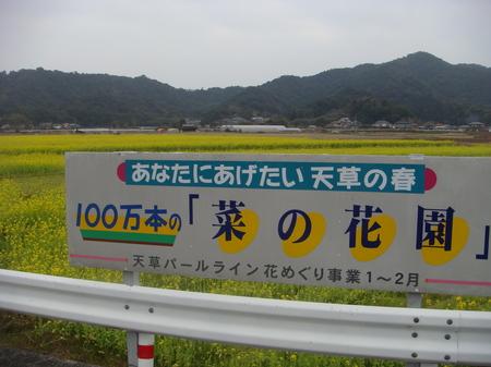10011101.JPG