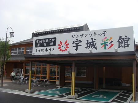 10051050.JPG