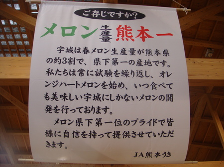 10051054.JPG
