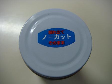 10071204.JPG