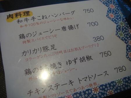 11060509.JPG