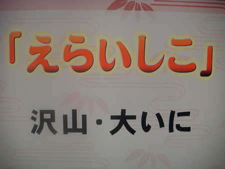 10031605.JPG